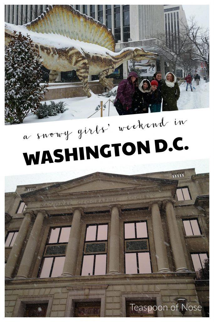A snowy girls' weekend in Washington D.C. | Teaspoon of Nose