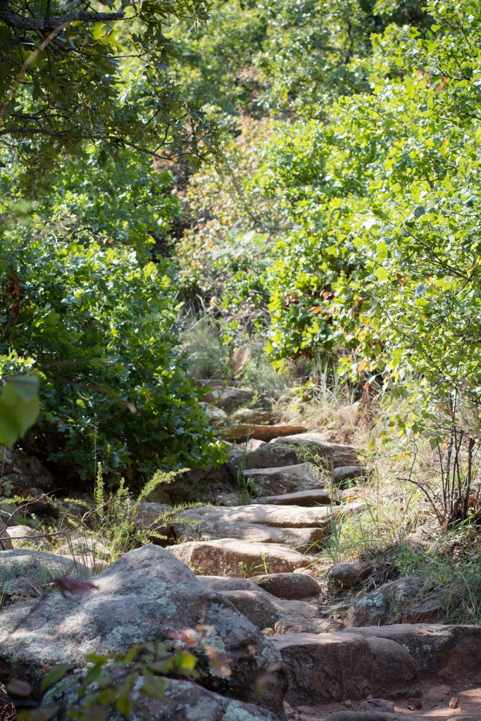 If you're looking for hiking in southwest Oklahoma, try the Wichita Mountains Wildlife Refuge. The Charons Garden trail is long enough for a solid hike and ends in beautiful views! | Teaspoon of Nose