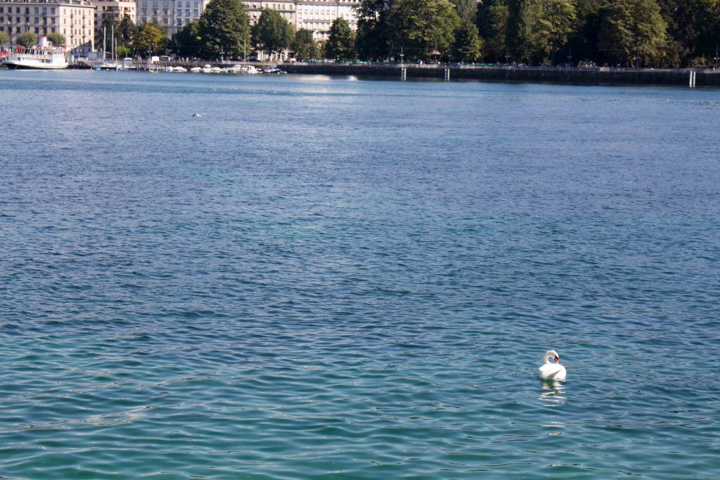 Geneva is a fantastic city. Here's a few things you can't miss in Switzerland! | Teaspoon of Nose