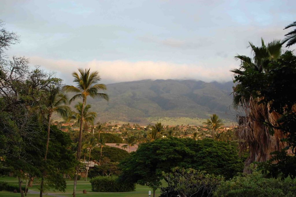 Maui's got the perfect mix of beauty and adventure! We loved our honeymoon there! | Teaspoon of Nose