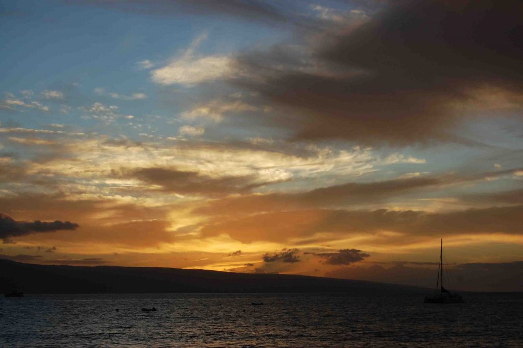 Maui's got the perfect mix of beauty and adventure! We loved our honeymoon there!    Teaspoon of Nose