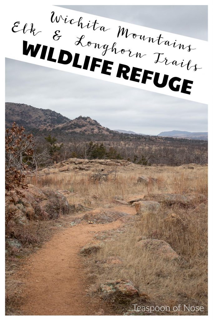 If you're looking for a short hike in the Wichita Mountains Wildlife Refuge, try the Longhorn and Elk trails!