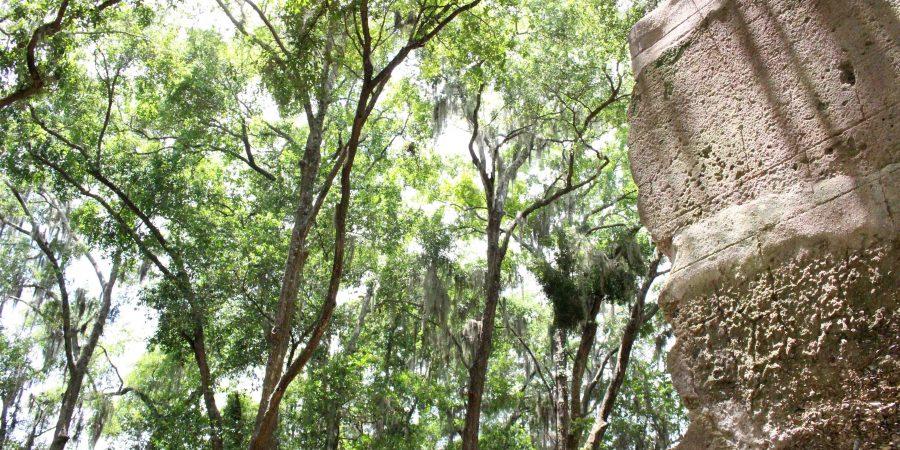 A vacation to Hilton Head Island is an idyllic little getaway! | Teaspoon of Nose