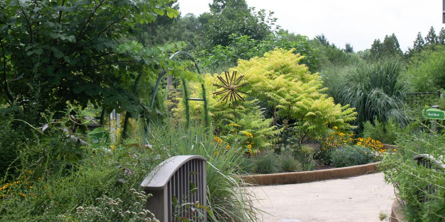 The Richmond Botanical Gardens makes the perfect kid-friendly summer day that's fun for the grown ups too! | Teaspoon of Nose