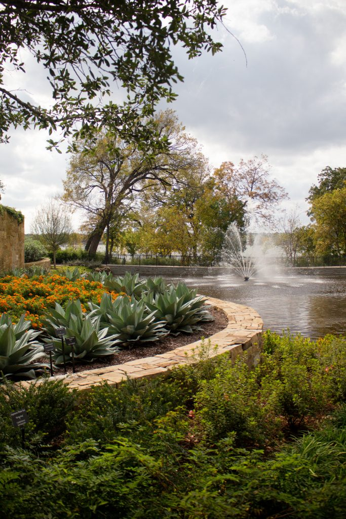 The one thing you must do in Dallas in the fall!!
