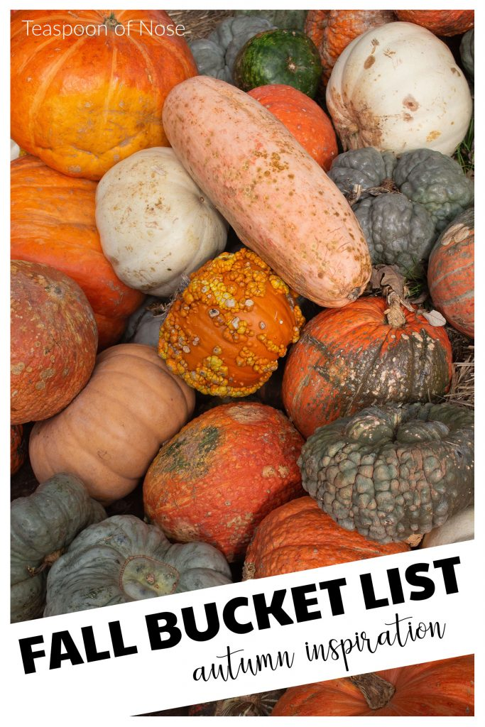 Autumn is just around the corner, so I'm sharing a fall bucket list for inspiration as the temperatures cool and leaves change!