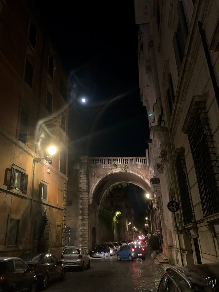 Want a new way to explore the Eternal City? Complete with passwords and secret doors, Rome speakeasies offer a fantastic way to check out local nightlife!