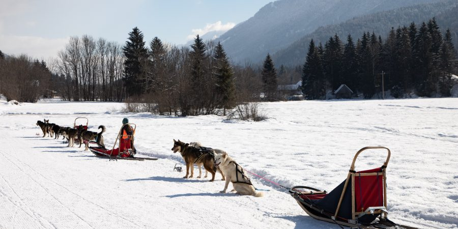 If you're looking for winter fun in northern Italy, a weekend in Tarvisio will hit all the high points!